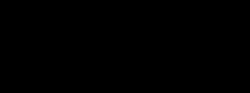 LOGO + tagline BICHROME noir
